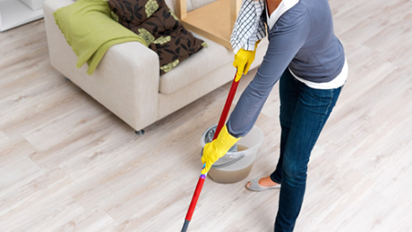 Professional Housse Cleaning